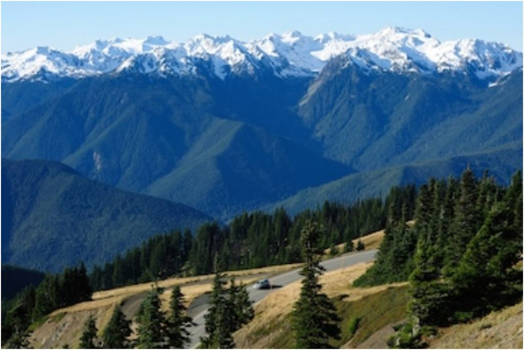 Hurricane Ridge Washington